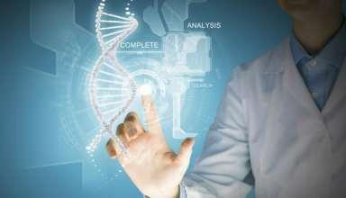 Künstlich reprogrammierte Stammzellen