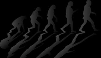 Kreationismus: Argumente, Probleme und Wahnsinn der wortwörtlichen Auslegung religiöser Texte
