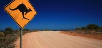 Das wilde Australien entdecken – Das sollten Sie vor Reiseantritt wissen