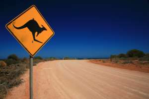 Das wilde Australien entdecken - Das sollten Sie vor Reiseantritt wissen