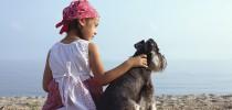 Urlaub mit dem Hund: Mit Bello über alle Berge